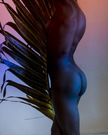 Palm leaf #1